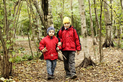 Walking in autumn forest Royalty Free Stock Photography