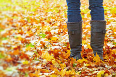 Walking in autumn. Image of legs in boots on the autumn leaves. Feet shoes walking in nature Stock Image