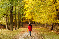 Walking in autumn park. Frankfurt Stock Photography