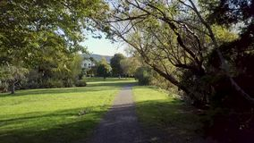 Walking Through Autumn Park, New Zealand. Smooth walking shoot, following path through new zealand autumn park as the sun begins to set stock footage