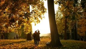 People autumn sunset. Walking autumn park photo sunset stock video footage