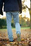 Walking away on autumn day outdoors Stock Photos