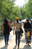 Walking in the bamboo forests of tourists in SHENZHEN WUTONG hill park Stock Image