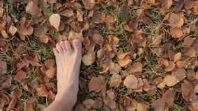 Walking barefoot in autumn