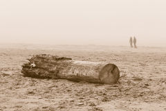 Walking on the beach. In a cold day in winter with fog Stock Photo