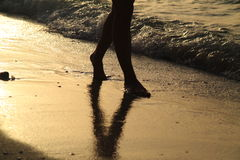 Walking on the beach Stock Photography