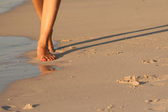 Walking on the beach Royalty Free Stock Photos