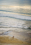 Walking the Beach, Encinitas California Stock Images