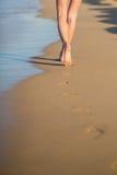 Walking on the beach Stock Image