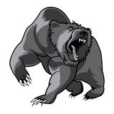 Walking bear animal head black and white vector Stock Images