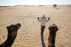 Walking Berber. Douz, Kebili, Tunisia - September 17, 2012 : Beduins leading tourists on camels at the Sahara desert on September 17, 2012 in Douz, Kebili Royalty Free Stock Image