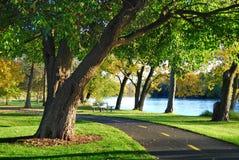 Free Walking Bike Path In The Park Stock Photo - 11436900