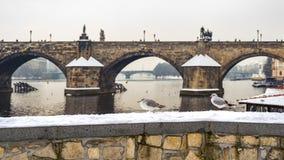 Free Walking Birds At Charles Bridge In Prague Stock Image - 159442691