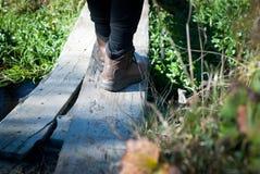 Walking on a board. Dangerous river crossing on a wood board Stock Images