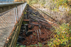 Walking Bridge At Coulon Park Royalty Free Stock Photography