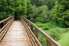 Walking Bridge and the Forest Stock Images