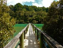 Walking Bridge in New Zealand. A on old wooden bridge connecting two islands in New Zealand Stock Photos