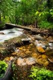 Walking bridge over flowing stream. A wooden bridge over a flowing wooded stream.  Rocky Mountain National Park Stock Photo