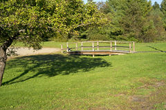 Walking Bridge Shadow Apple Tree Stock Photo