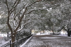Walking Bridge in Snow royalty free stock images