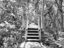 Walking Bridge royalty free stock photography