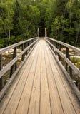 Walking bridge White Mountains  New Hampshire Stock Images