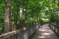 Walking Bridge in the Woods stock photo