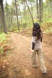 Walking on brown path Stock Photos