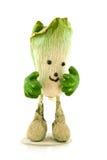 Walking cabbage Stock Photos