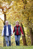 Walking in the countryside Royalty Free Stock Photography