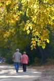 Walking couple. Sharp birch branch and blured walking couple on the background Stock Photos