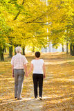 Walking couple. Elderly walking couple holding theirs hands Stock Photography