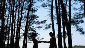 Walking couple in the forest stock video