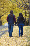 Walking couple in the park. In Virginia on an autumn afternoon stock image