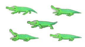 Walking crocodile illustration Stock Image