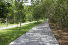 Walking and cycling path. Punggol River Park Connector, Singapore Stock Photography