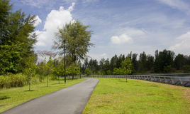 Walking and cycling path Stock Photos