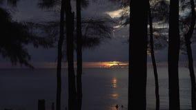 Walking in dark forest near the beach with beautiful sunset background. Walking through dark exotic forest near the beach on tropical island with beautiful stock footage