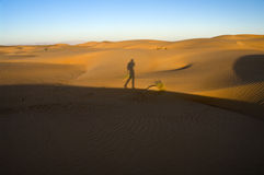Walking in the desert Stock Image