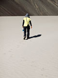 Walking in the desert Royalty Free Stock Images