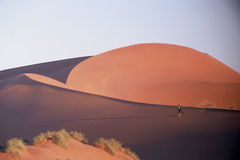 Walking in the desert. Lone figure walking in the desert stock photography