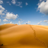 Walking in desert Stock Images