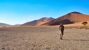 Walking in the desert Stock Images