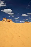 Walking on Desert,Western Australia Royalty Free Stock Images