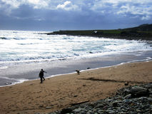Walking the dog. A lifeguard walking along the beach at Dooagh, Achill Island, Co. Mayo, Ireland Stock Photos