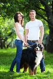 Walking the dog. Young couple walking with dog in park Stock Images