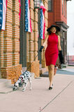 Walking the dog. A beautiful woman in a red dress walking her Dalmatian puppy dog down the street Royalty Free Stock Photo