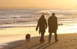 Walking the Dog. Couple walking the dog along a windswept beach at sunset Royalty Free Stock Photo