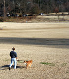 Walking the Dog. In the park Royalty Free Stock Photography