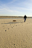 Walking the dog stock image